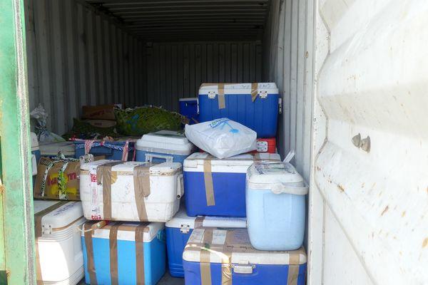 Collecte de produits alimentaires pour entraide, Lifou, district de Wetr, 29 septembre 2021. Glacières, cartons, paniers