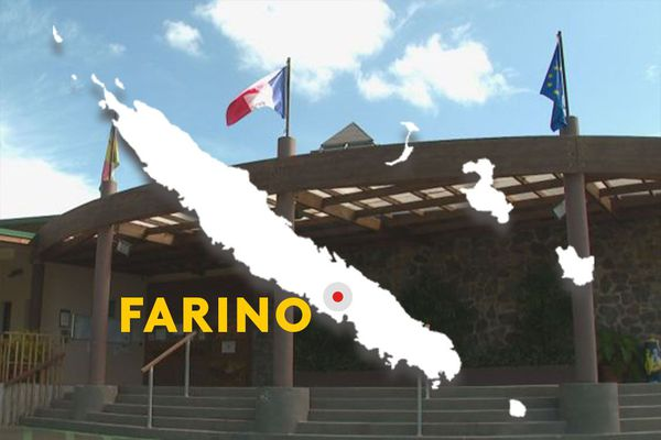 Municipales Farino