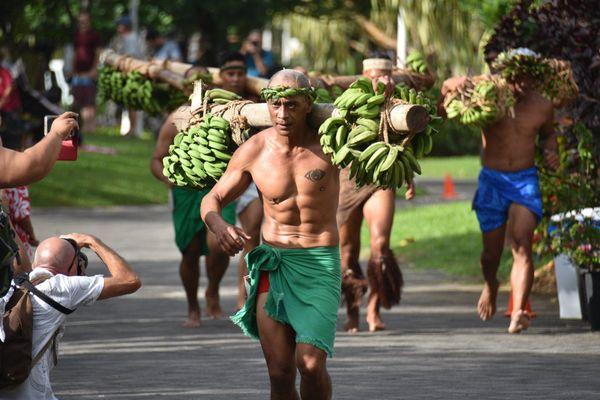 porteurs de fruits
