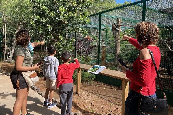 Le Zoo Parc de La Réunion ouvre ses portes à l'Etang-Salé