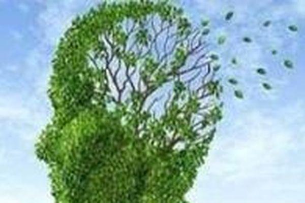 La journée mondiale de lutte contre la maladie d'Alzheimer
