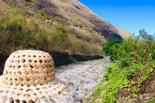 La rivière de la Punaruu à sec