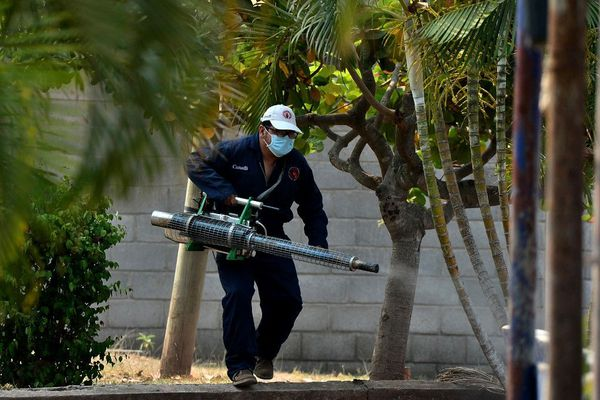 dengue tegucigalpa