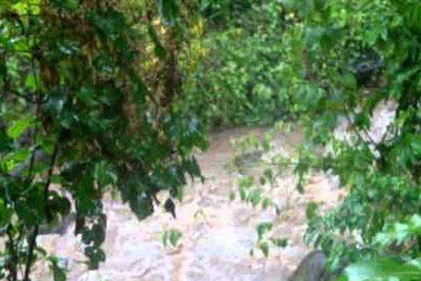 rivière en cru 2