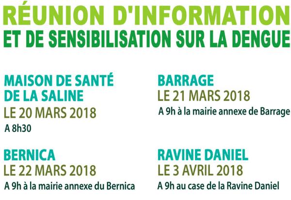 20180320 Réunion sur la dengue