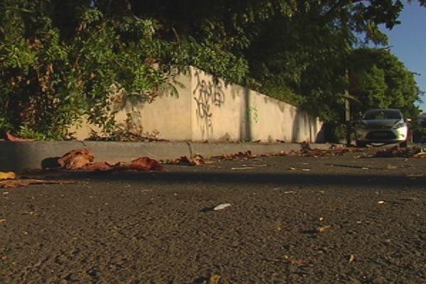 Vue de trottoir baie de l'Orphelinat affaire Tamaï 2014