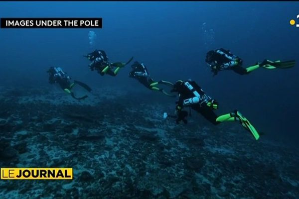 ''Under the pole'' présente son programme