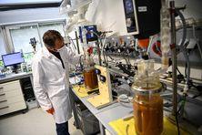 Un géologue et chimiste du BRGM teste des bactéries naturelles dans un réacteur contenant du minerai de nickel et de cobalt de la Nouvelle-Calédonie