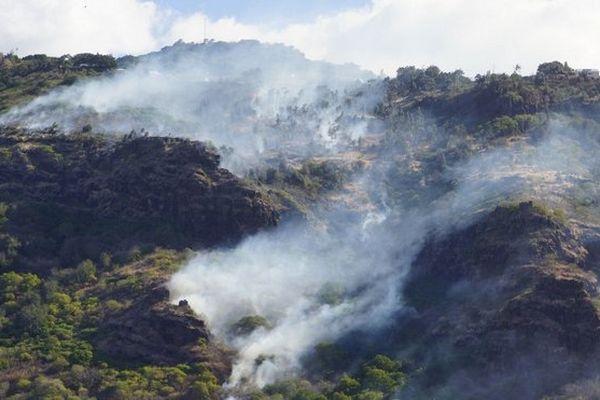 Feux de broussailles sur le Cap Bernard.Les maisons menacées au chemin de la vigie