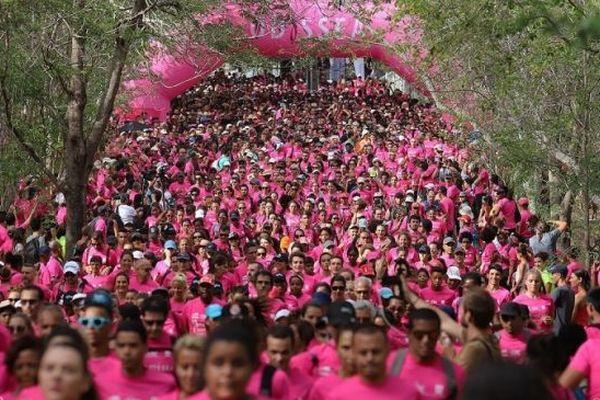 Odysséa donne rendez-vous ce week-end à des milliers de personnes à l'Etang-Salé.