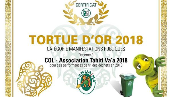 Tortue d'or 2019