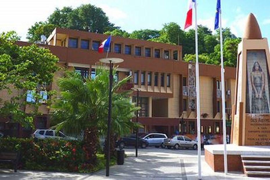 Echos de campagne N°41- Elections municipales 2020 : Les Abymes (suite et fin)... - Guadeloupe la 1ère