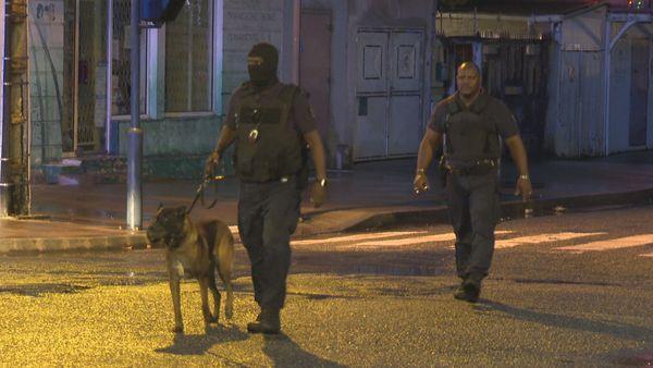 une équipe de policiers de Cayenne et leur chien