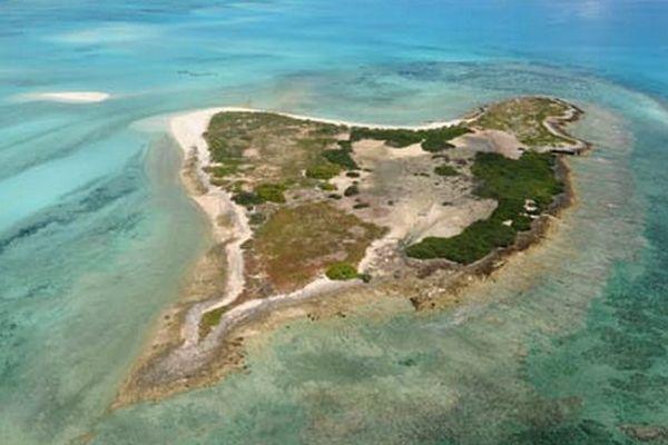 L'île du Lys