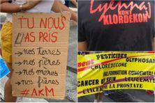 Images de défilés de rue contre l'empoisonnement à la chlordécone (illustration)