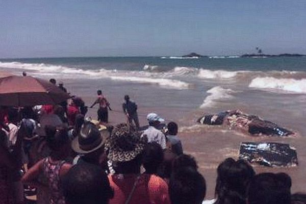 Baleine échoué à Madagascar