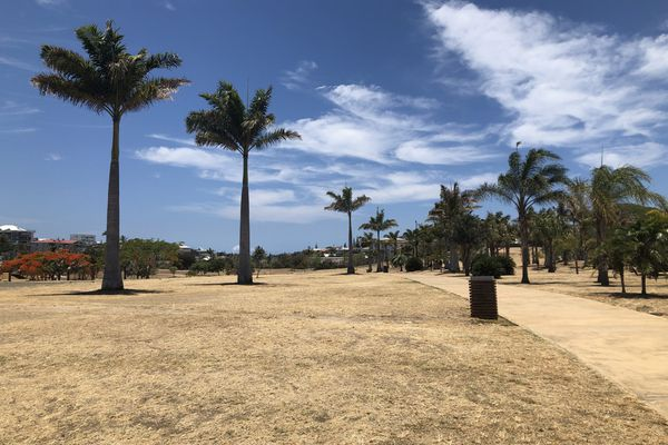 Parc Brunelet Nouméa. sécheresse