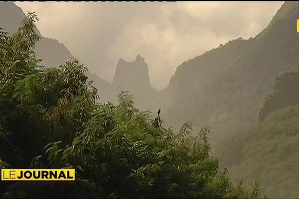 Quatre jours dédiés à l'environnement à Punaauia
