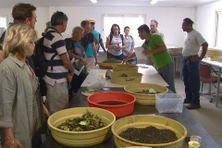 Mardi, les participants de l'atelier ont visité Port-Laguerre, entre autres.