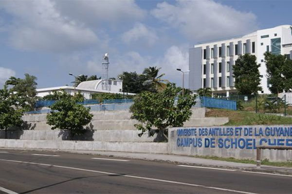 Université Martinique