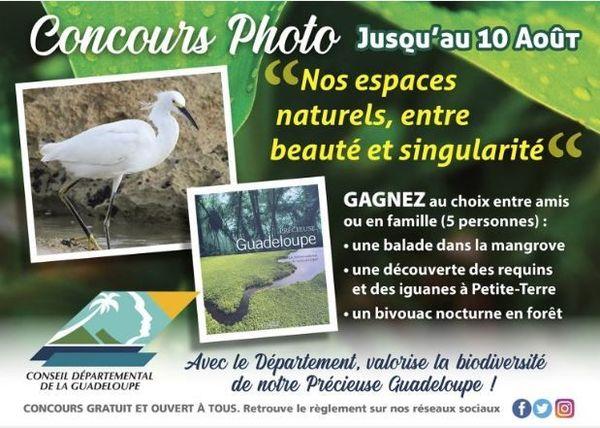Biodiversité concours photo