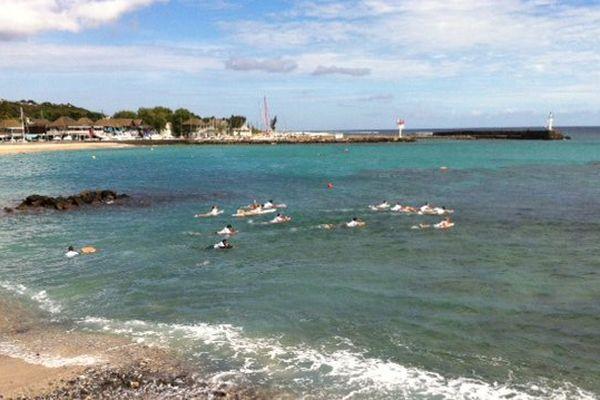 Surfeurs se jettent à l'eau