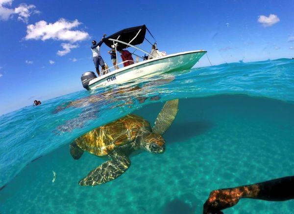 Tourism sea Barbados