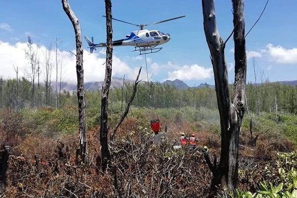 Des hectares de végétation ravagés par un incendie au Grand Brûlé.