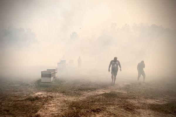 Feu de Païta, 3 février 2020, les ruches