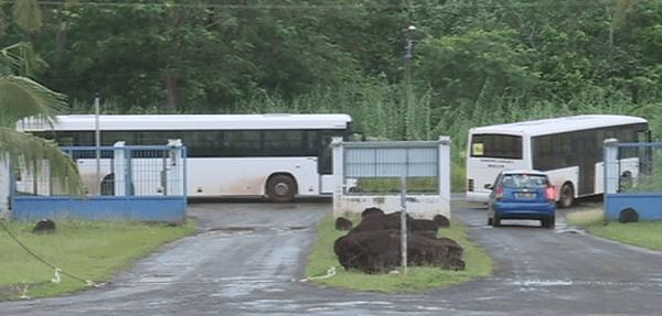 bus scolaires