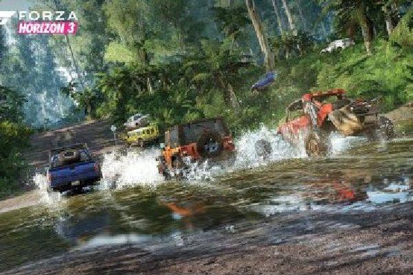 Le jeu vidéo de course automobile emmène les coureurs dans les villes et les paysages australiens. Ici: la forêt primaire du sud, et ses 2 icônes: l'eucalayptus et la fougère géante.