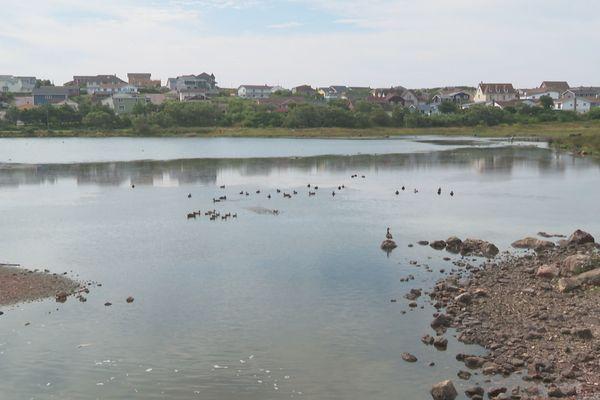 pollution etang boulot saint-pierre