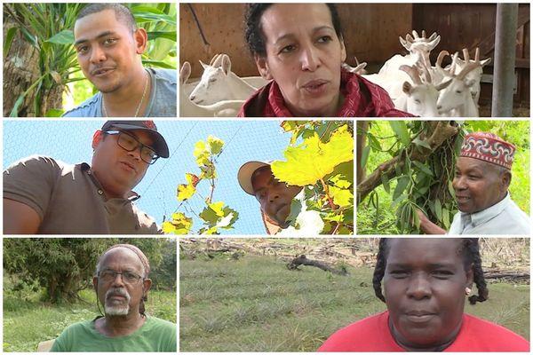 Paroles d'agriculteurs d'Outre-mer