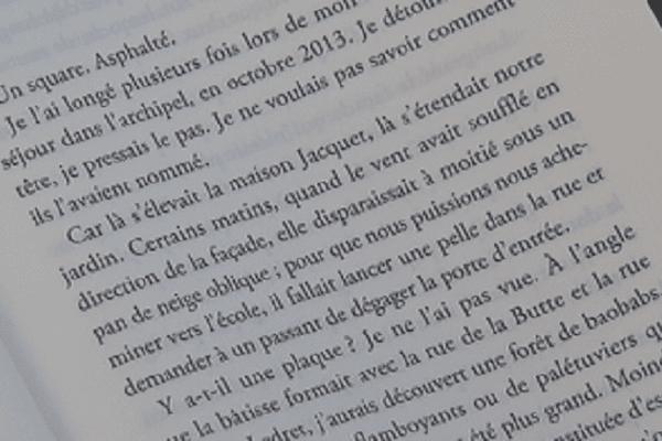 """"""" Retour d'Ulysse à Saint-PIerre """" d'Eugène Nicole"""