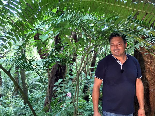 Jim et sa forêt