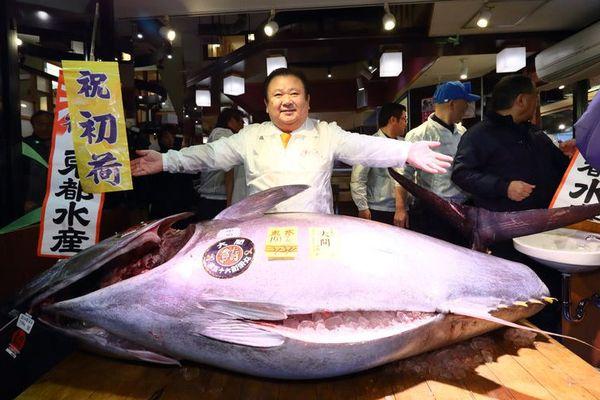 Japon : un thon rouge vendu 71 millions de Fcp !
