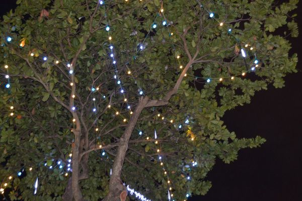 lumières de la ville13