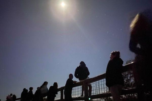 observation éclipse de lune