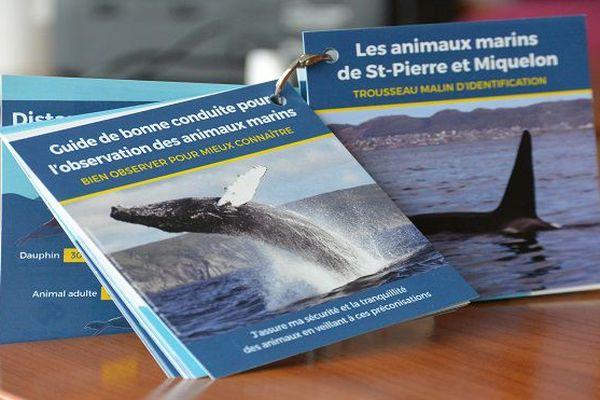 Le trousseau, un outil pédagogique pour connaître et observer les animaux marins