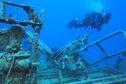 Les épaves, récifs artificiels et hôtes des écosystèmes témoins de l'histoire