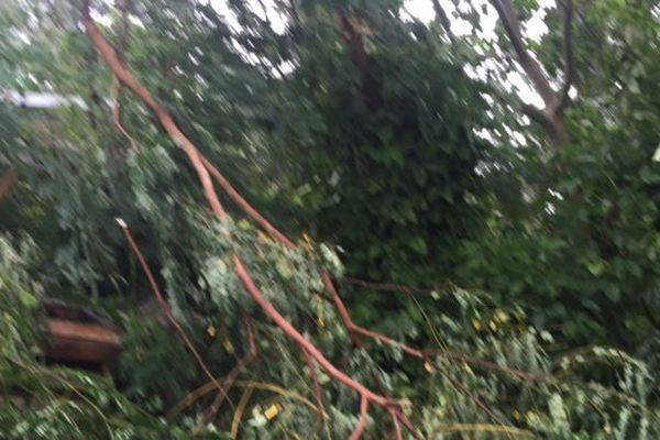 AMOS branches cassées
