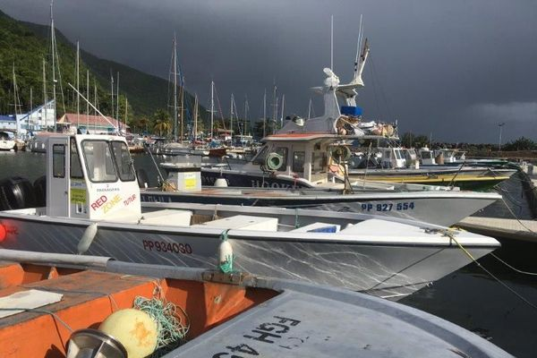 Marina de Rivière Sens