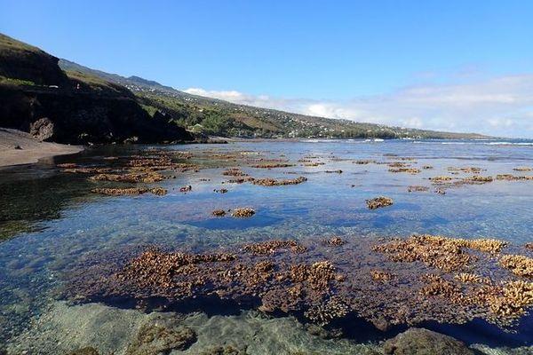 grandes marées pleine lune lune nouvelle d'hiver austral coraux à nus lagon 020920