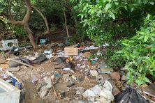 Spectacle désolant dans la mangrove des Badamiers avec des déchets de toute sorte, y compris de l'electroménager.