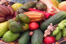 Panier agricole (image d'illustration)