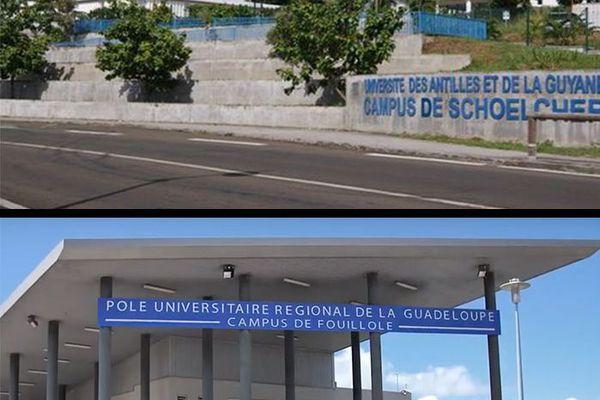 Université Guadeloupe et Martinique