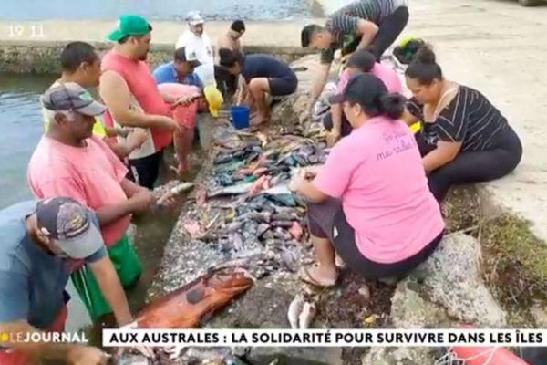 Aux Australes, solidarité et chasse pour survivre