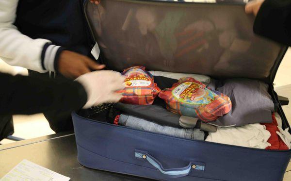 Contrôle valise douanes