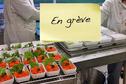 Grève de la cuisine centrale : des repas livrés au compte-gouttes