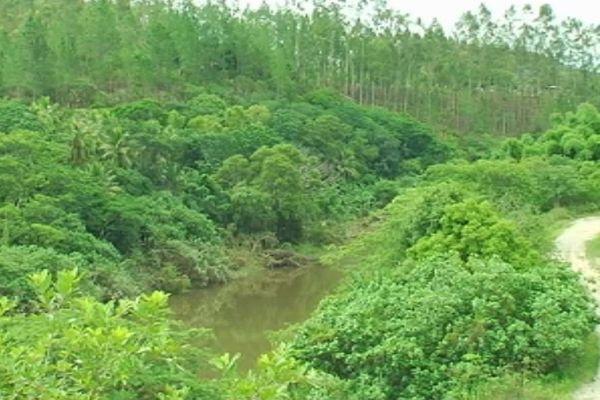 ouégoa : affaire meurtre sur le diahot